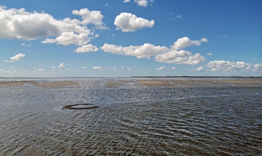 Mit ablaufendem Wasser werden im Rungholtgebiet Kulturspuren, wie der hier zu sehende Brunnen, sichtbar (Foto: Ruth Blankenfeldt).