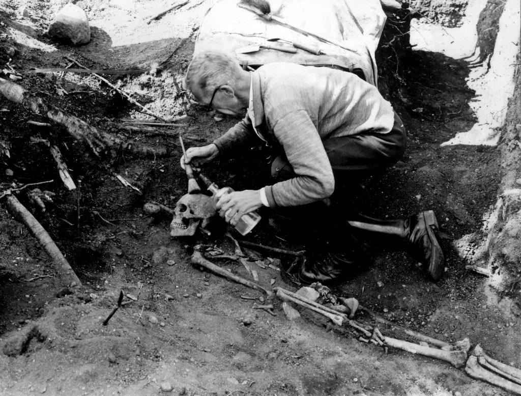 Freilegung einer Skelettbestattung