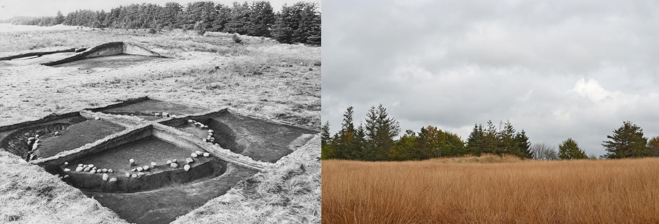 aarupgaard-urnfield